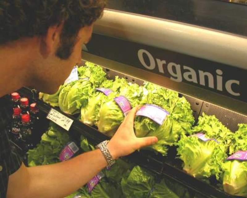 Diferenta dintre produsele naturale si produsele bio – organice